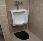 Homeplate Disposable Urinal Mats